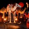 ev-571-camellos2
