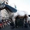 ev-2687-caballo